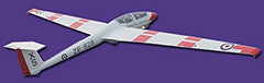 FlyFly ASK-21 Air Cadets 2.6m Electric Glider FF-B019E