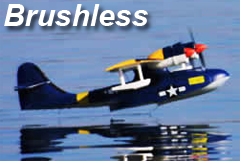 Catalina 54.3'' 4-Channel Ready-to-Fly RC Sea Plane Powered by Brushless Motor/LIPO