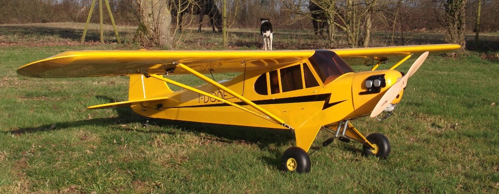 Goldwing ARF-Brand Piper Cub J3 50CC 119'' RC Plane A