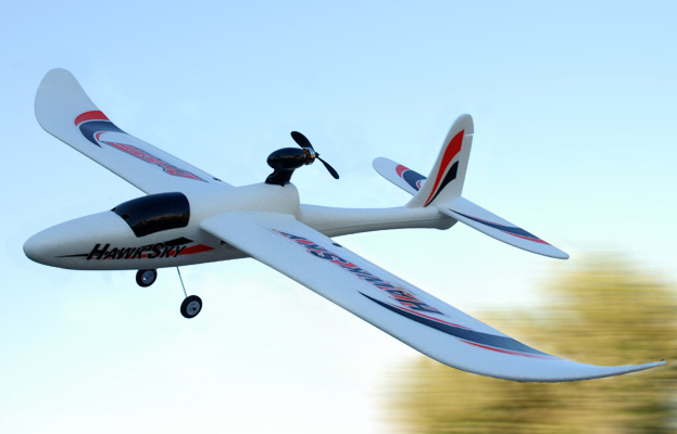 2.4Ghz 4 Channel Dynam Hawk Sky Electric Brushless Powered Glider RTF
