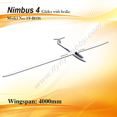 Flyfly Nimbus 4m/157'' Glider With Brake FF-B036