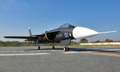 LX SU-47 Berkut Twin 70mm EDF 360 Degree RC Jet With Retracts PNP