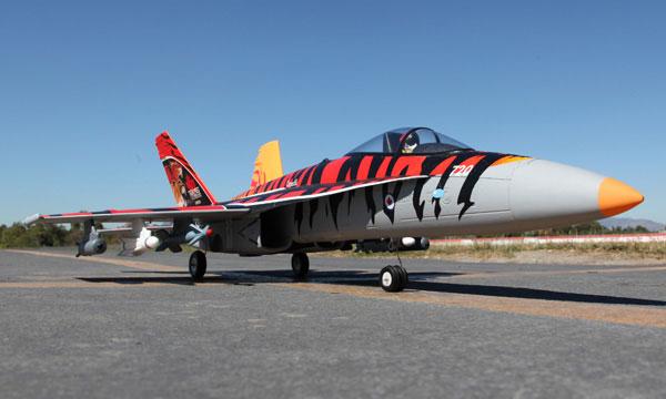 Starmax F/A-18C Hornet Fire Tiger 70mm Electric EDF RC Jet ...
